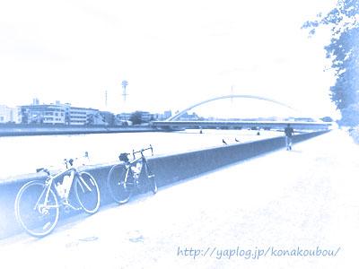 鶴見川サイクリング_a0392423_00270355.jpg