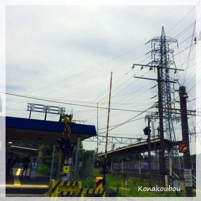 鶴見川サイクリング_a0392423_00270368.jpg