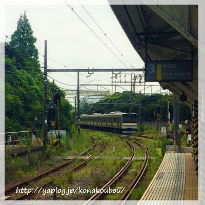 鶴見川サイクリング_a0392423_00270387.jpg