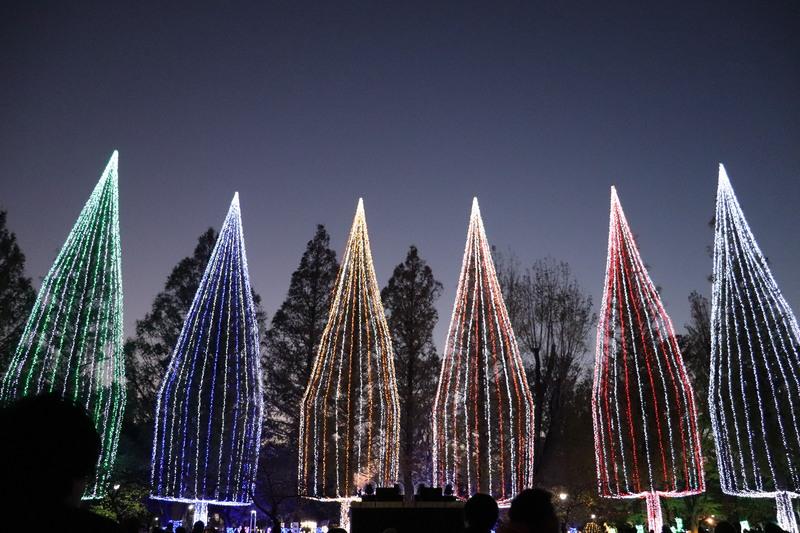 2019ADACHI 「光の祭典」始まる。_a0214329_2101324.jpg