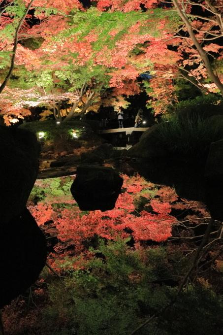 【大田黒公園】_f0348831_20004592.jpg