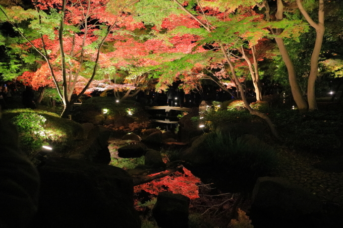 【大田黒公園】_f0348831_20004672.jpg