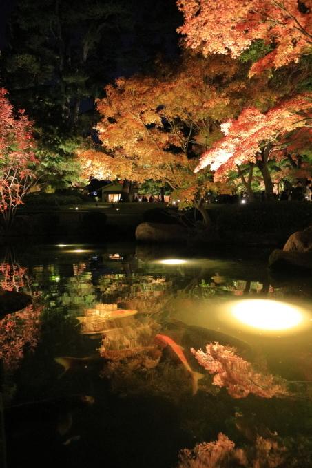 【大田黒公園】_f0348831_20005563.jpg