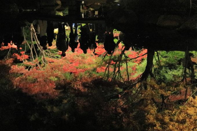 【大田黒公園】_f0348831_20005976.jpg