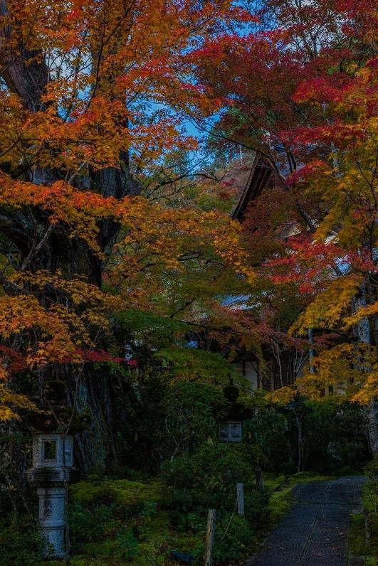 2019京都紅葉~西明寺_e0363038_10335032.jpg