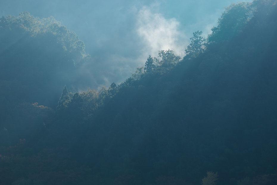 霧残る朝_c0067040_22402125.jpg
