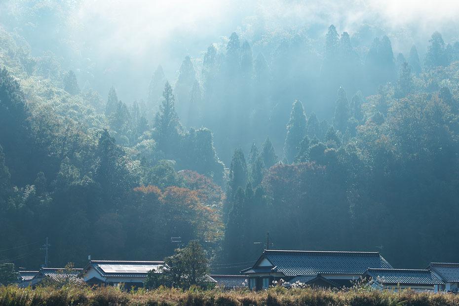 霧残る朝_c0067040_22410370.jpg