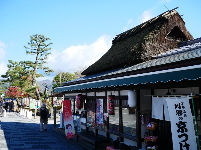 嵯峨・嵐山めぐり、2 嵐山  2019-12-04 00:00    _b0093754_14420857.jpg