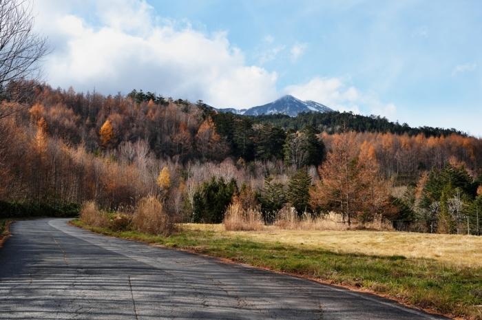 御岳山の紅葉_c0330563_17144710.jpg
