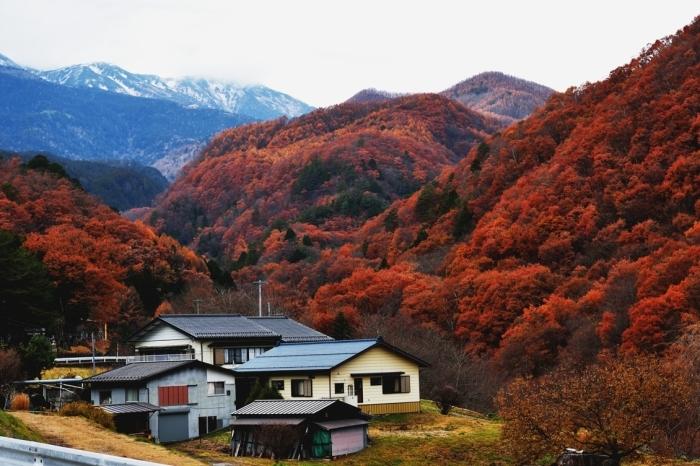 御岳山の紅葉_c0330563_17171664.jpg