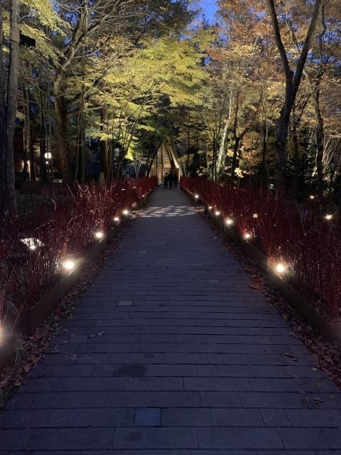 11月の旅〜①〜人生初の軽井沢へ_c0274374_07095845.jpeg