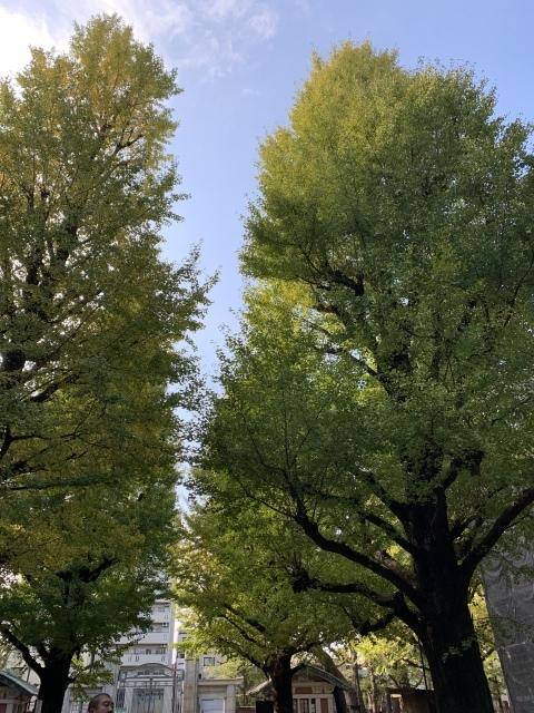 11月の旅〜①〜人生初の軽井沢へ_c0274374_07115054.jpeg