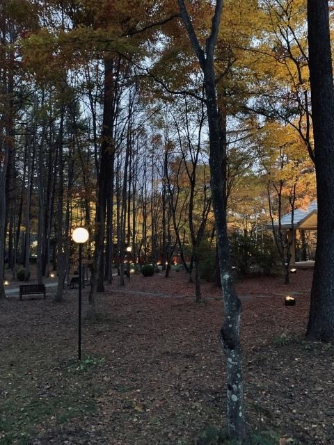 11月の旅〜①〜人生初の軽井沢へ_c0274374_07312849.jpeg