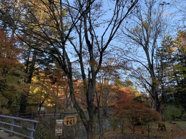 11月の旅〜①〜人生初の軽井沢へ_c0274374_07405169.jpeg