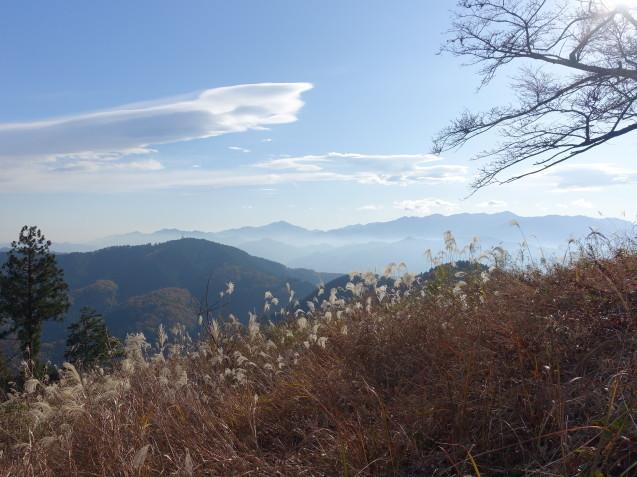 景信山に半年ぶりに登りました_e0232277_16474809.jpg