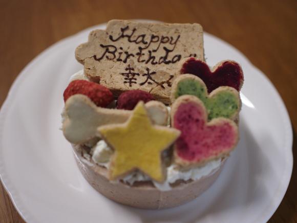 幸たん、5歳のお誕生日♡_c0028792_20183903.jpg