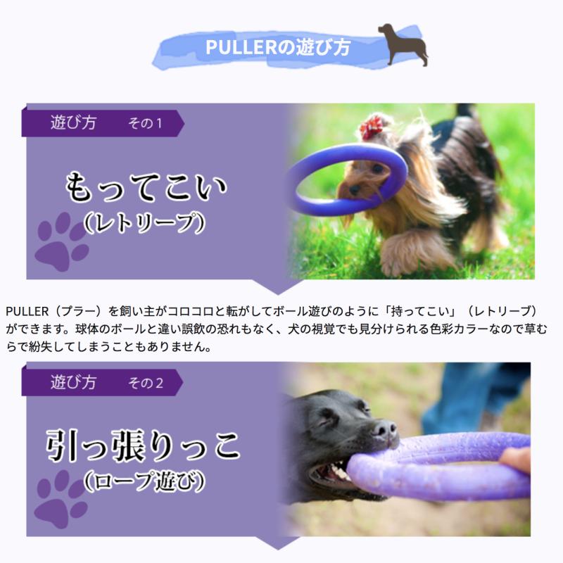 プラーの正しい遊び方♪_b0275998_10061565.png