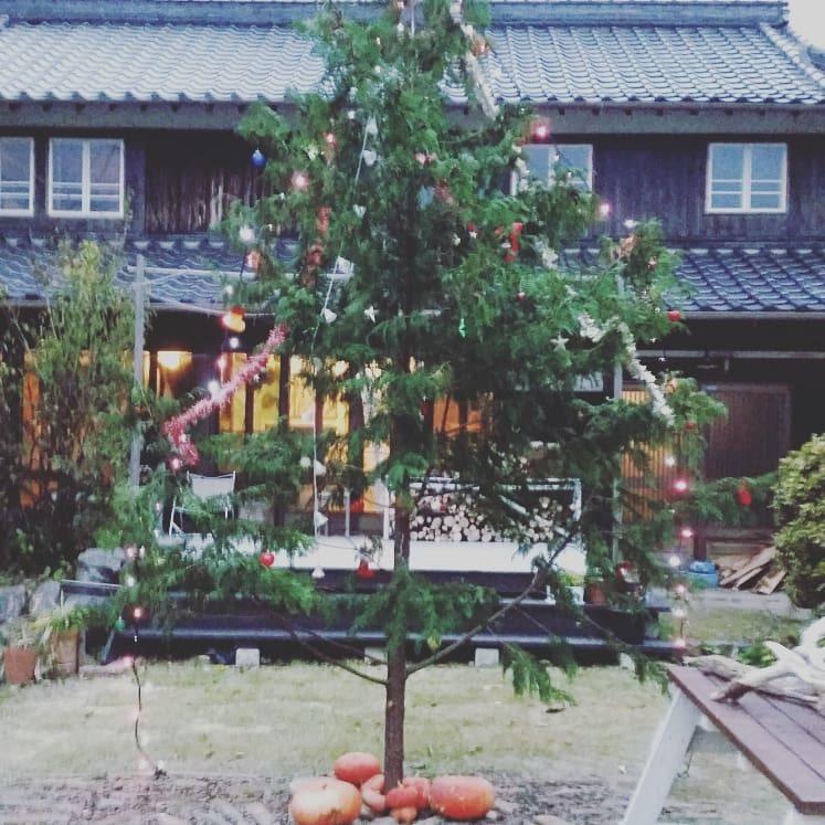クリスマスツリー_f0208315_17185578.jpg