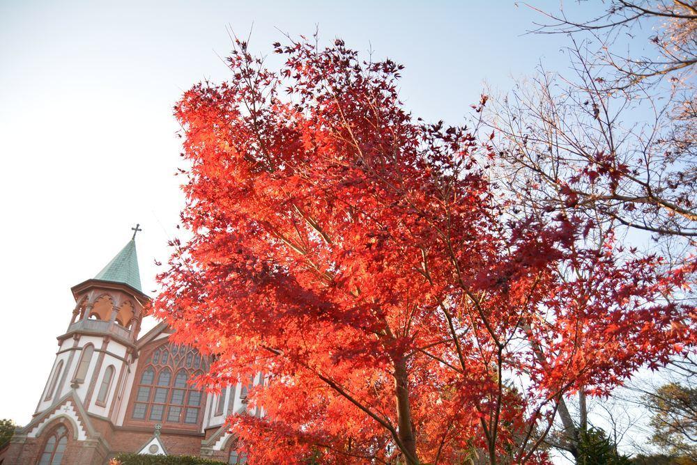 聖ヨハネ教会堂と紅葉_e0373930_20300327.jpg