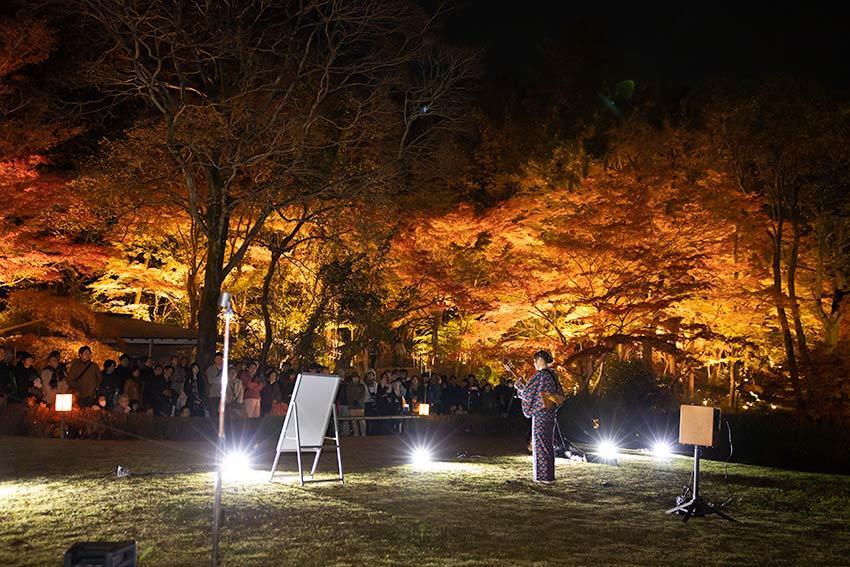 東山動植物園 紅葉ライトアップ2019~演奏編~_f0373339_10542353.jpg