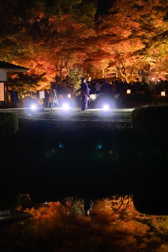 東山動植物園 紅葉ライトアップ2019~演奏編~_f0373339_11022852.jpg
