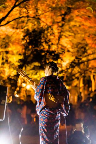東山動植物園 紅葉ライトアップ2019~演奏編~_f0373339_11042184.jpg
