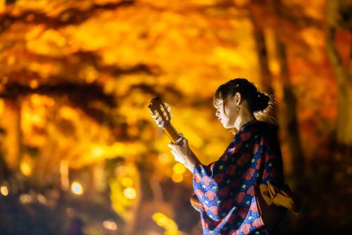 東山動植物園 紅葉ライトアップ2019~演奏編~_f0373339_11063270.jpg