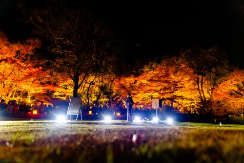東山動植物園 紅葉ライトアップ2019~演奏編~_f0373339_11063723.jpg