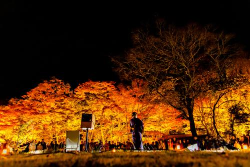 東山動植物園 紅葉ライトアップ2019~演奏編~_f0373339_11064663.jpg