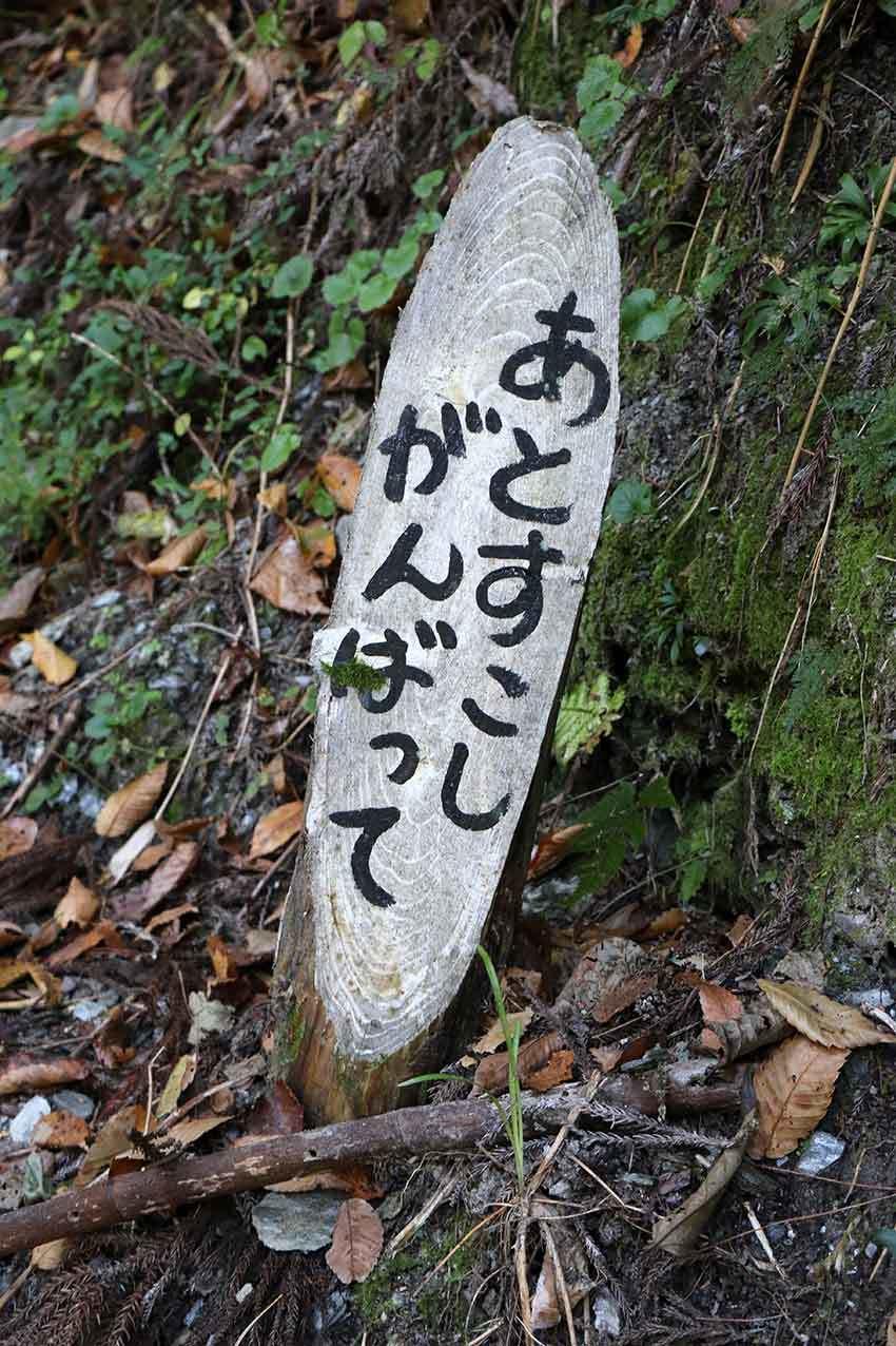 第11回「美郷梅酒まつり」-03♪_d0058941_20314724.jpg
