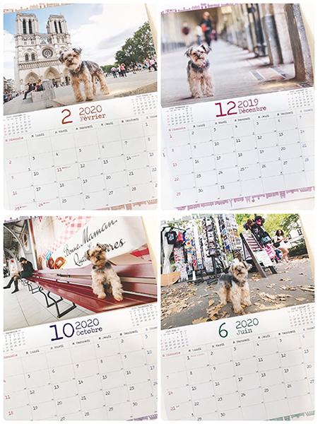 2020年バブーカレンダー&京都高島屋「ぼわっと」始まりのおしらせ_c0024345_20204893.jpg