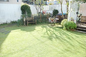12月の芝生*_a0184348_16244654.jpg
