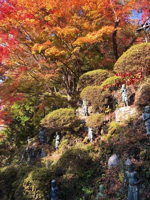 紅葉の高尾山へ🍁_a0092659_23585623.jpg