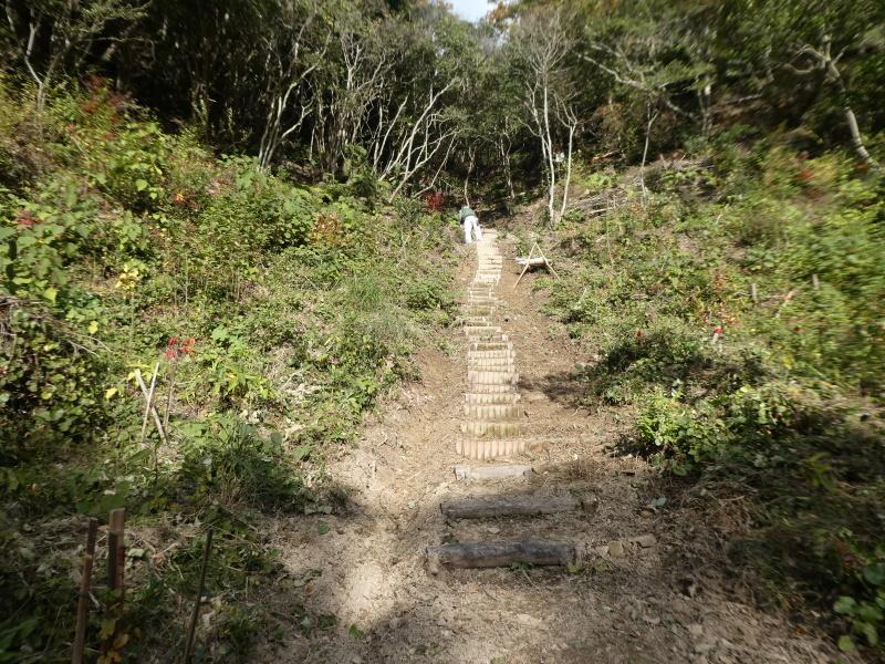 孝子の森定例活動にイノシシも参加か・・・?_c0108460_18095176.jpg