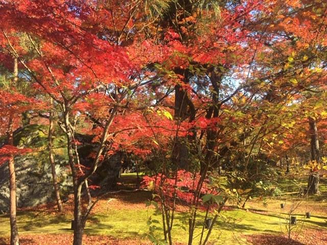 明日4日から福島区役所での色覚イベント 10日まで_f0256164_11035077.jpg