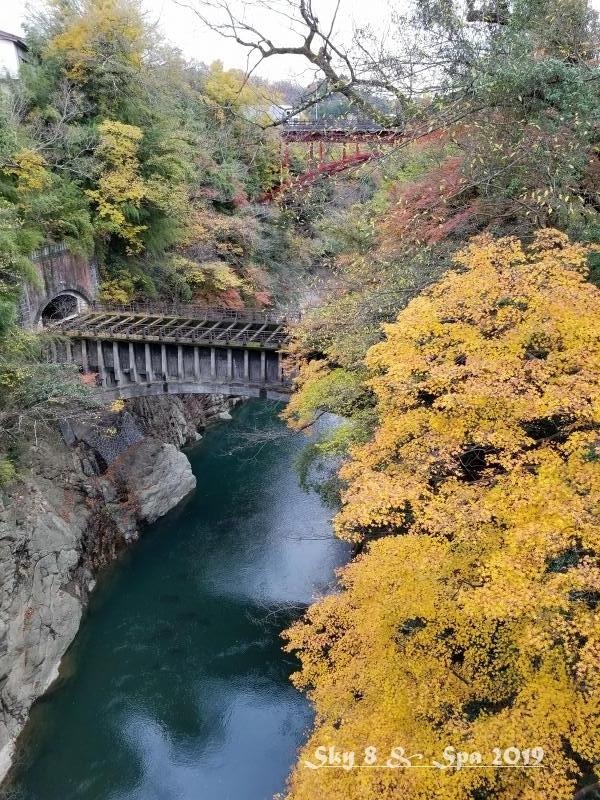 ◆ ギネス認定・世界最古の宿へ、その9 日本三奇橋「猿橋」へ(2019年11月)_d0316868_22273406.jpg