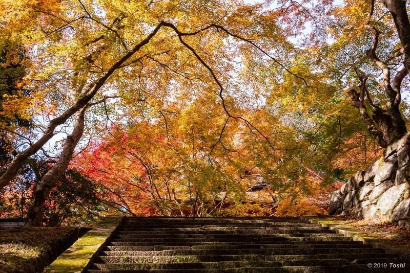 談山神社_c0350572_21403392.jpg