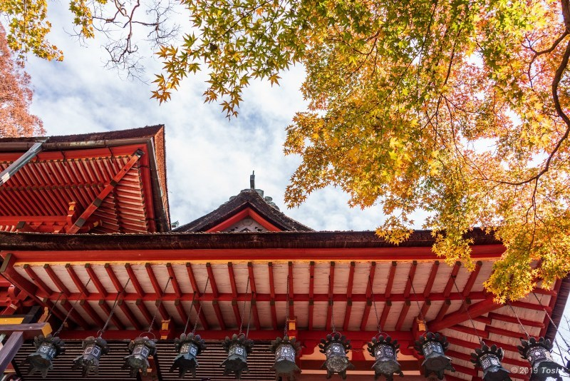 談山神社_c0350572_21410952.jpg