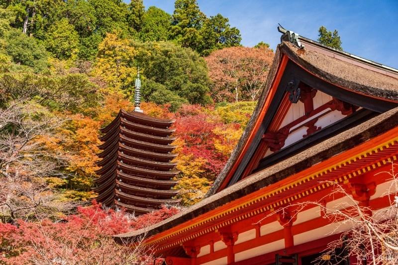 談山神社_c0350572_21422635.jpg