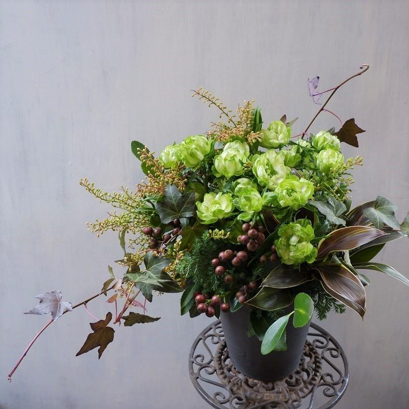 オークリーフ(エルソルさんオープンの花)_f0049672_19360337.jpg