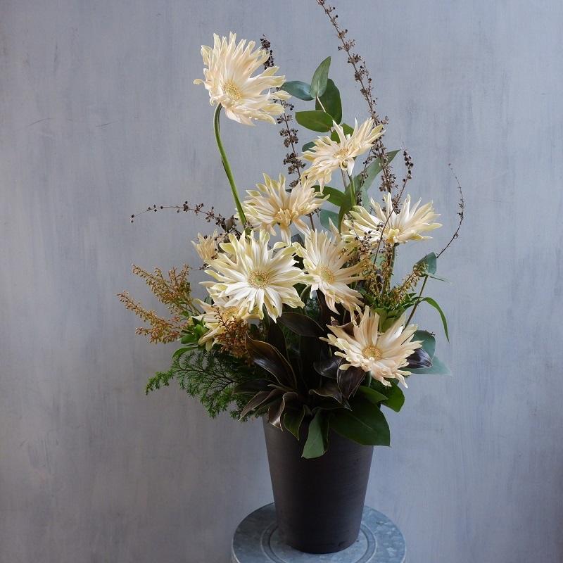オークリーフ(エルソルさんオープンの花)_f0049672_19363803.jpg