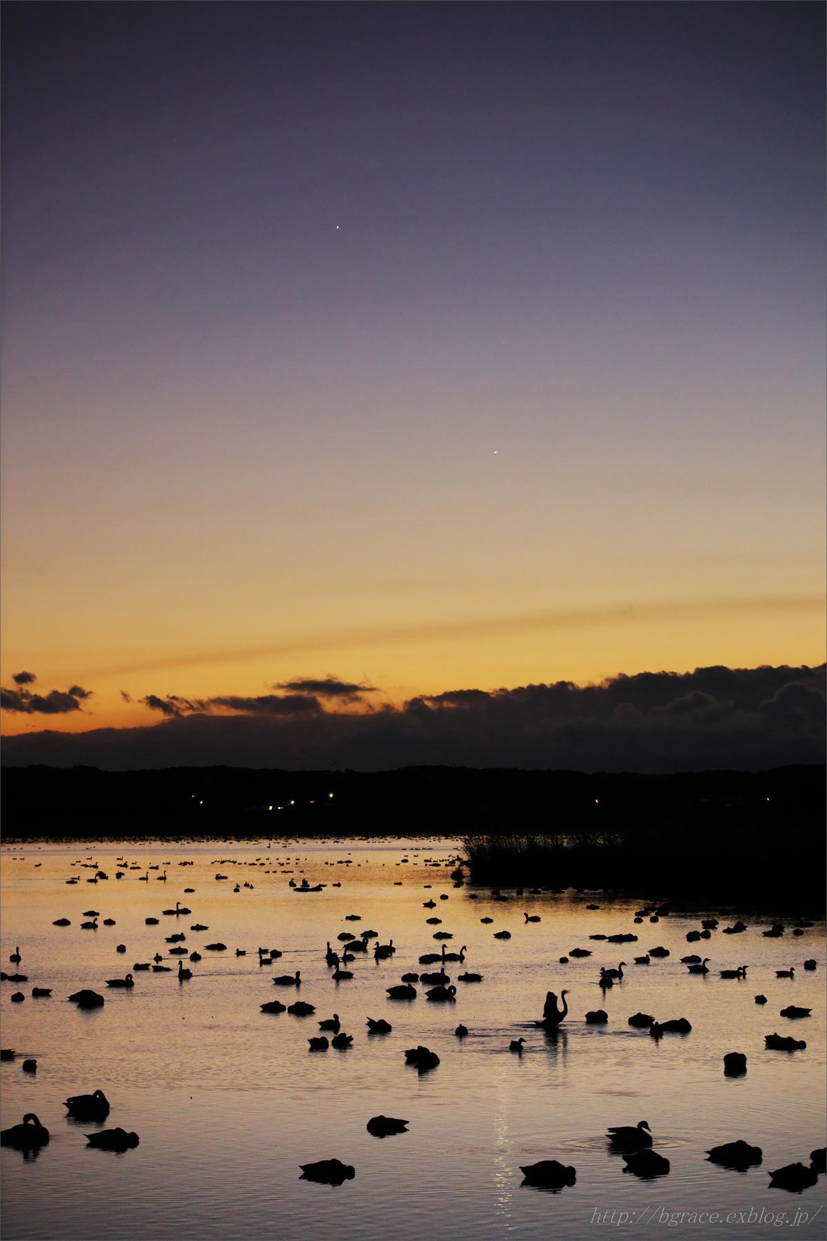 夕暮れの伊豆沼 金星と木星_b0191074_19504974.jpg