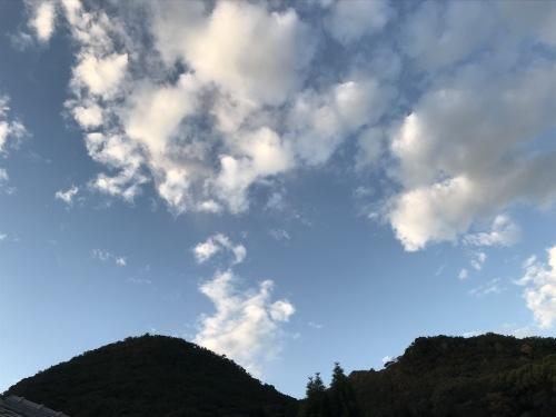 モンちゃんのケアレッスン_f0054677_07204481.jpeg