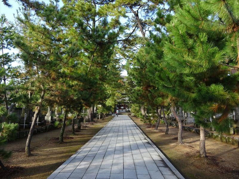 自転車遍路(愛媛~香川)3日目_e0201281_18091919.jpg