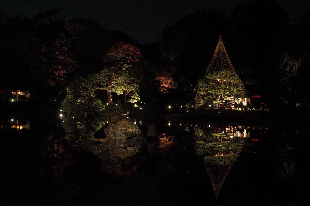 六義園へ夜の紅葉狩りに行ってきました。_e0348392_20215282.jpg