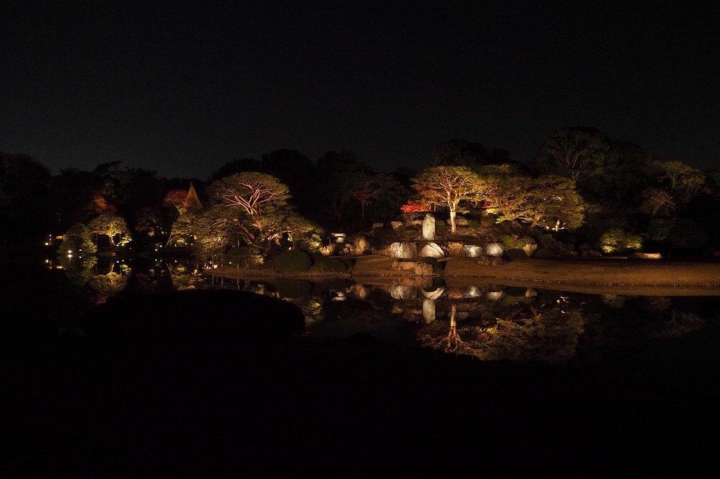 六義園へ夜の紅葉狩りに行ってきました。_e0348392_20222219.jpg