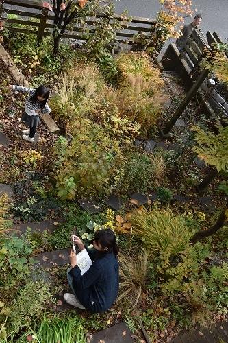「緑でつながる庭づくり 秋編」開催しました!_c0124100_12343113.jpg