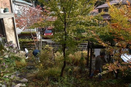 「緑でつながる庭づくり 秋編」開催しました!_c0124100_12343452.jpg