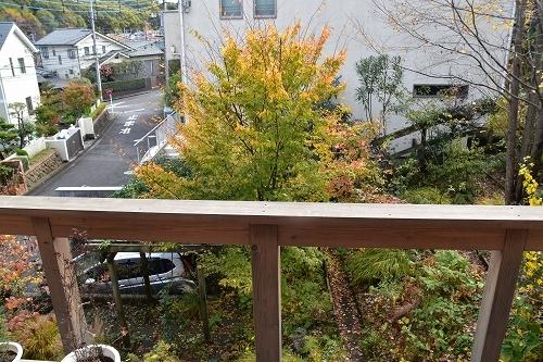 「緑でつながる庭づくり 秋編」開催しました!_c0124100_12343952.jpg