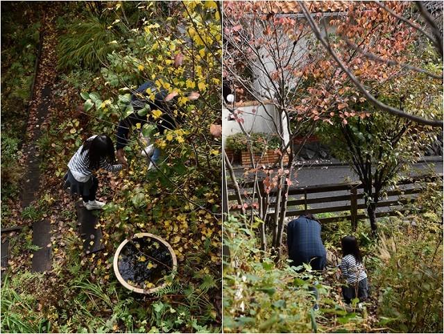 「緑でつながる庭づくり 秋編」開催しました!_c0124100_13051498.jpg